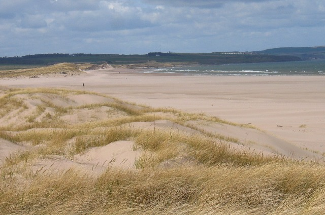The sand dunes on Goswick Beach where the children from Scremerston went on their Sunday School trip  - Stuart Meek - Creative Commons Attribution-Share Alike 2.0 Generic license.