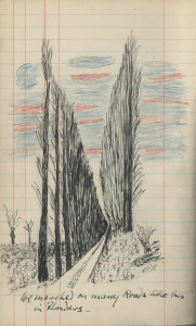 One of a number of drawings found within the diary.