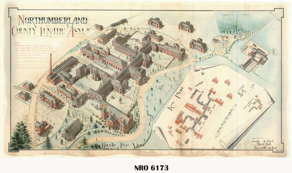 Birds eye view of Asylum 1901